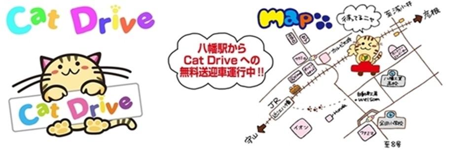 cat_drive編集-地図済み